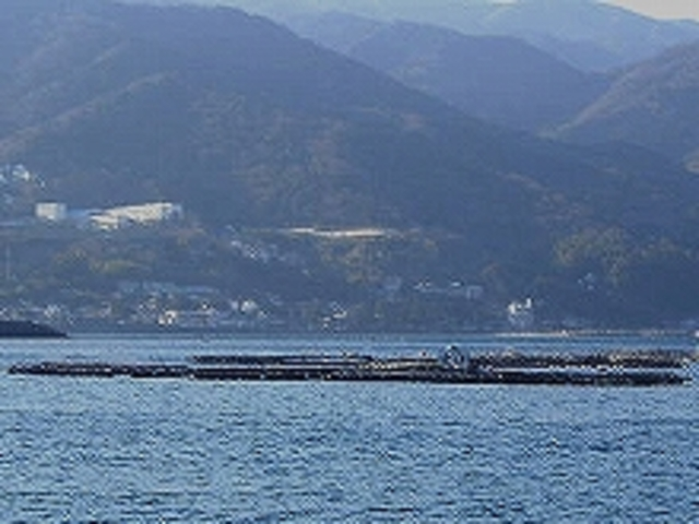 筏釣りの東海